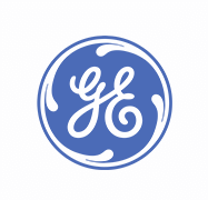 GE IT Risk Logo