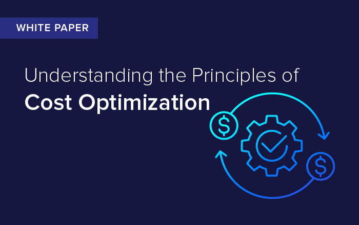 Understanding the Principles of Cost Optimization
