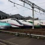 Bullet Trains - East Shinkansen Lineup at Niigata Depot